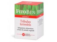 Fitoben Energy Tribulus Terrestris 50 Capsule