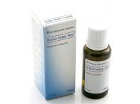 Arnica Compositum Heel Guna - Medicinale Omeopatico - Gocce - 30 Ml